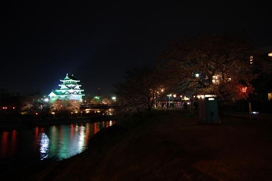 01桜トイレ