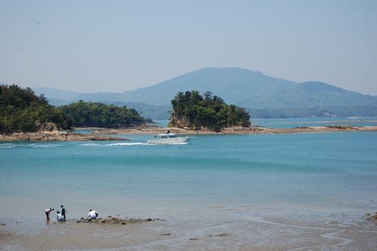 20天草松島
