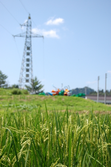 10稲草間