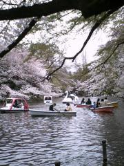 inokashira02.jpg