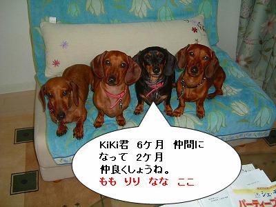 20105キキ6ケ月 (7)