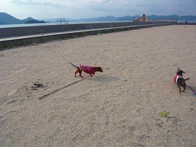 201010しまなみ海道 (2)