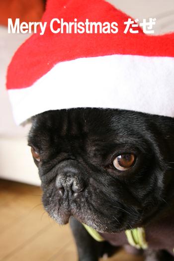 2008-12-24 メリークリスマス1