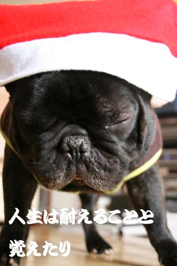 2008-12-24 メリークリスマス2