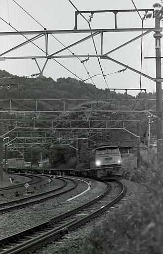 DPP_0454.jpg