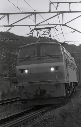 DPP_0463.jpg