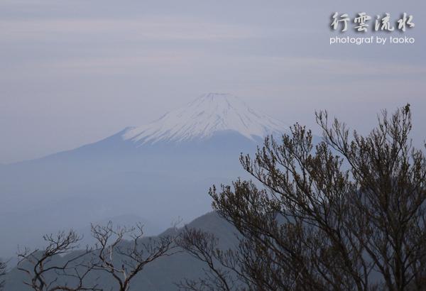 photo226.jpg