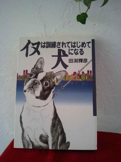 犬本ー (15)