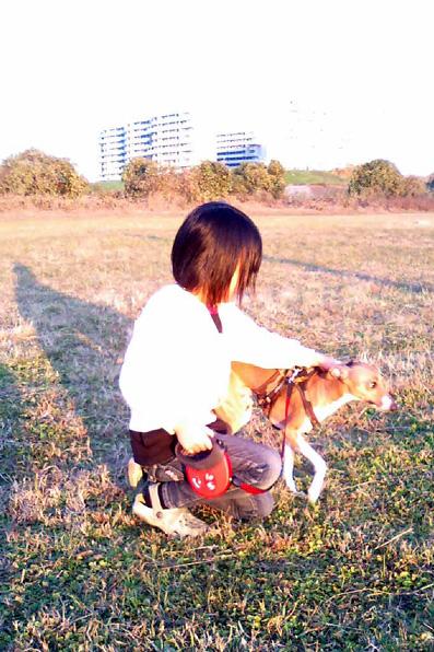 犬とバックパッカー5