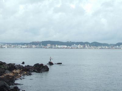 イルカも住んでいるという錦江湾。