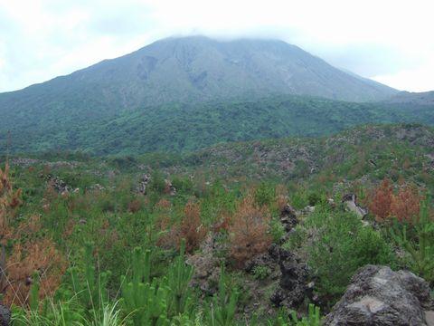 間近に桜島御岳を眺める。