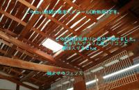 IMGP5409.jpg