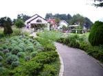 河口湖八木崎公園