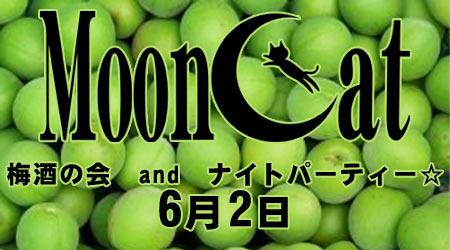 mooncat0602.jpg