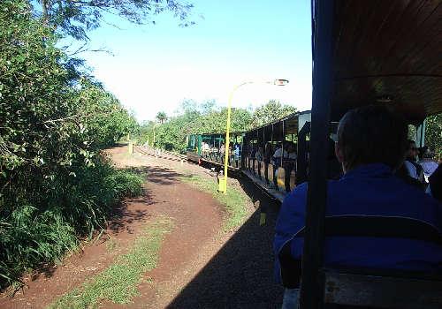 ig_train2