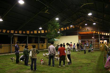 2008100523.jpg