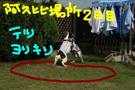 2008101720.jpg