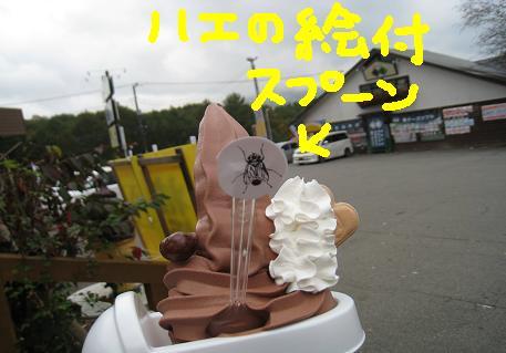 2008102514.jpg