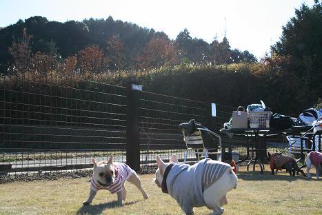 2008120753.jpg