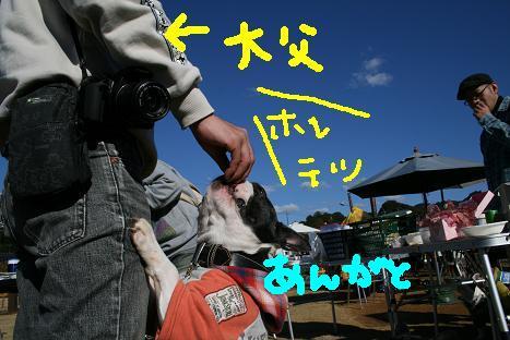 2008120766.jpg