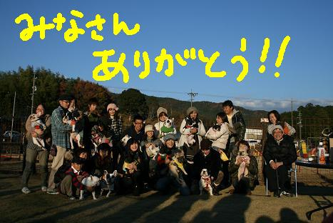 2008120781.jpg