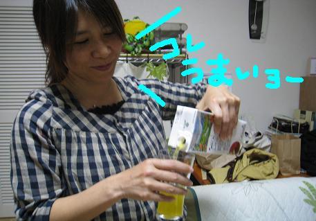 2008122018.jpg