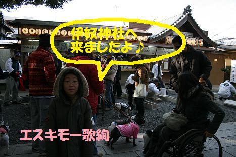 2009011160.jpg