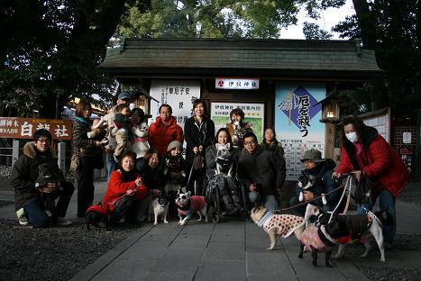 2009011170.jpg