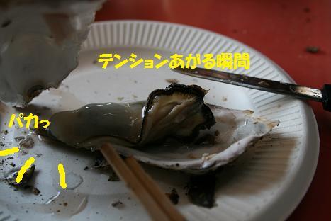 2009030115.jpg