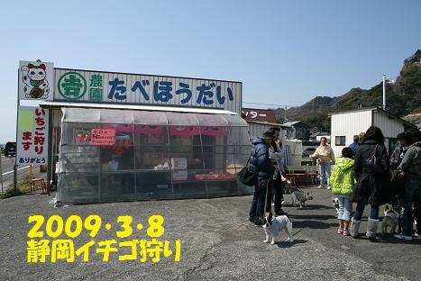 2009030803.jpg