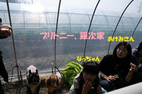 2009030819.jpg