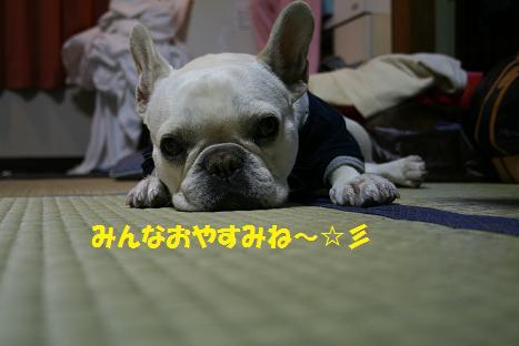 20090328106.jpg