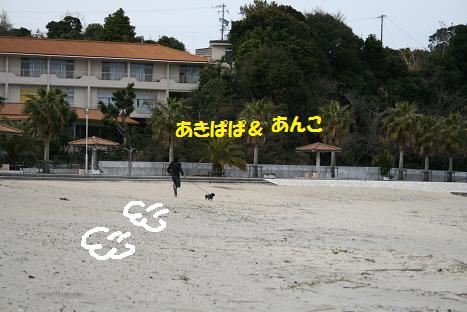2009032855.jpg