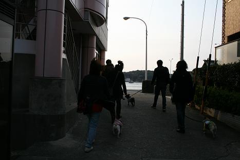 2009032902.jpg