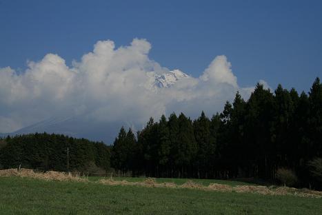2009041255.jpg
