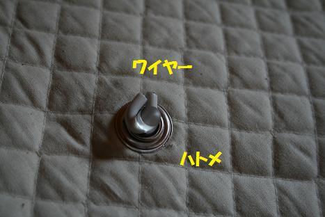 2009050305.jpg
