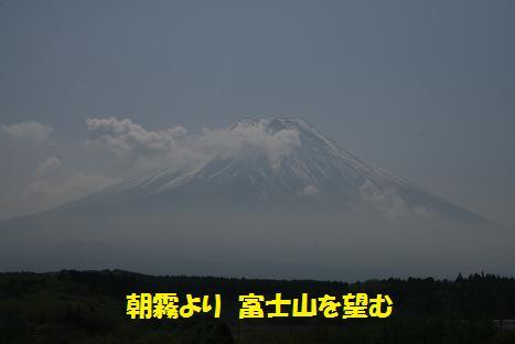 20090503113.jpg