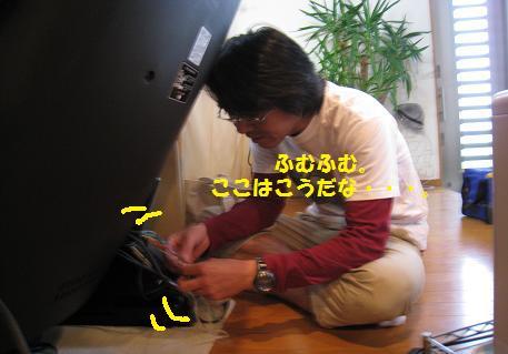2009051602.jpg