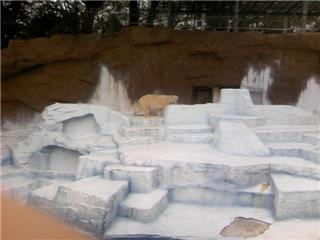 動物園1.jpg
