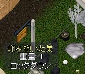 WS003389.JPG