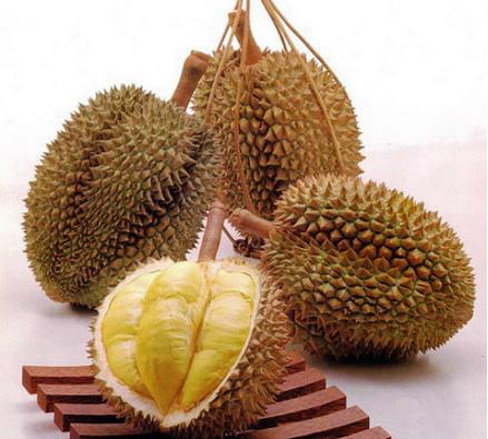 durian7.jpg