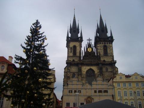 ティーン教会とツリー