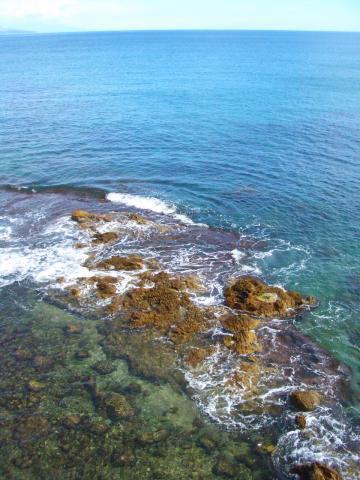 透き通った海!