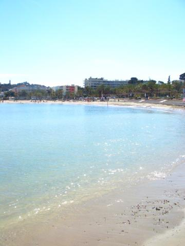 きらめく砂浜