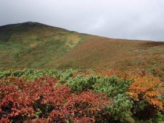 s15山頂と紅葉3