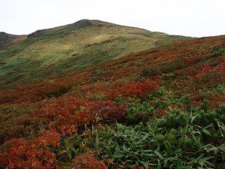 s16山頂と紅葉6
