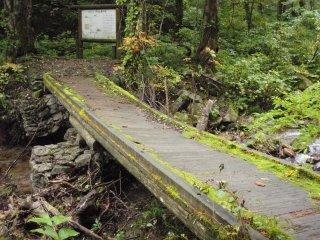 s05滑る橋