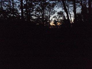 s02夜明け