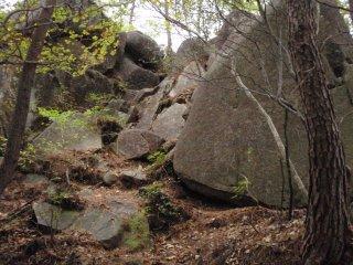 s03岩出現