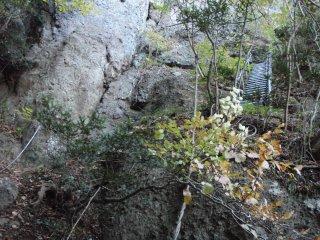 s02岩の間を行く